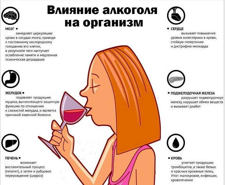 Влияние алкоголя на женский организм негативное