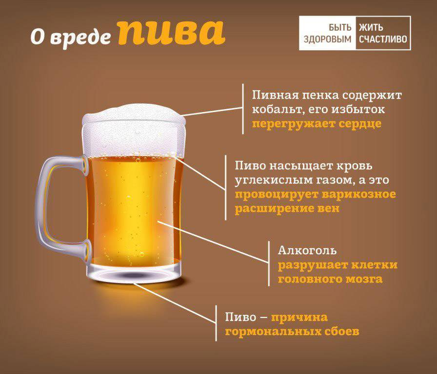 Вред пива, оказываемый на организм женщины и мужчины. Какой вред от пива