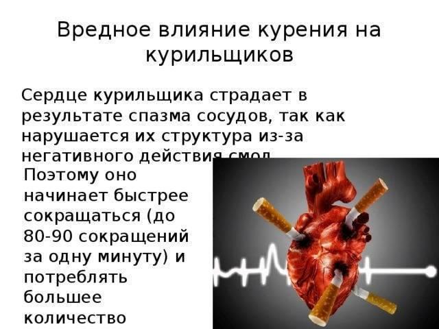 Сосуды и курение: влияние, всд, расширяет или сужает