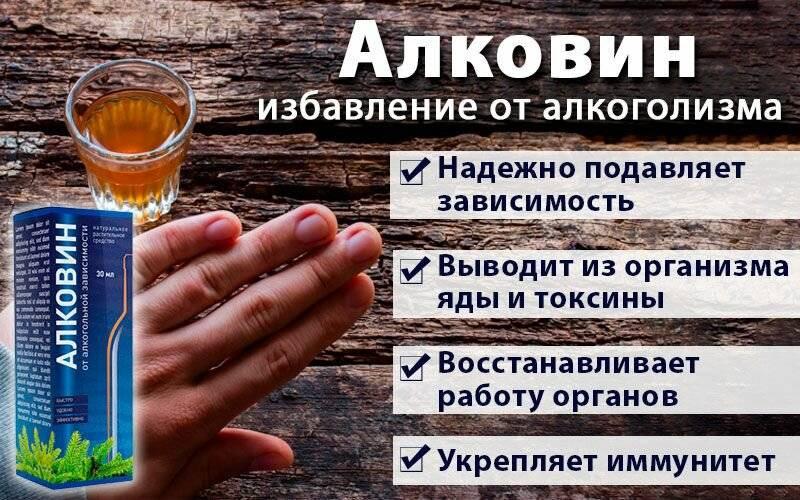 Как почистить кровь от алкоголя и токсинов