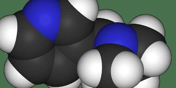 Никотиновая кислота и никотин – сходства и отличия