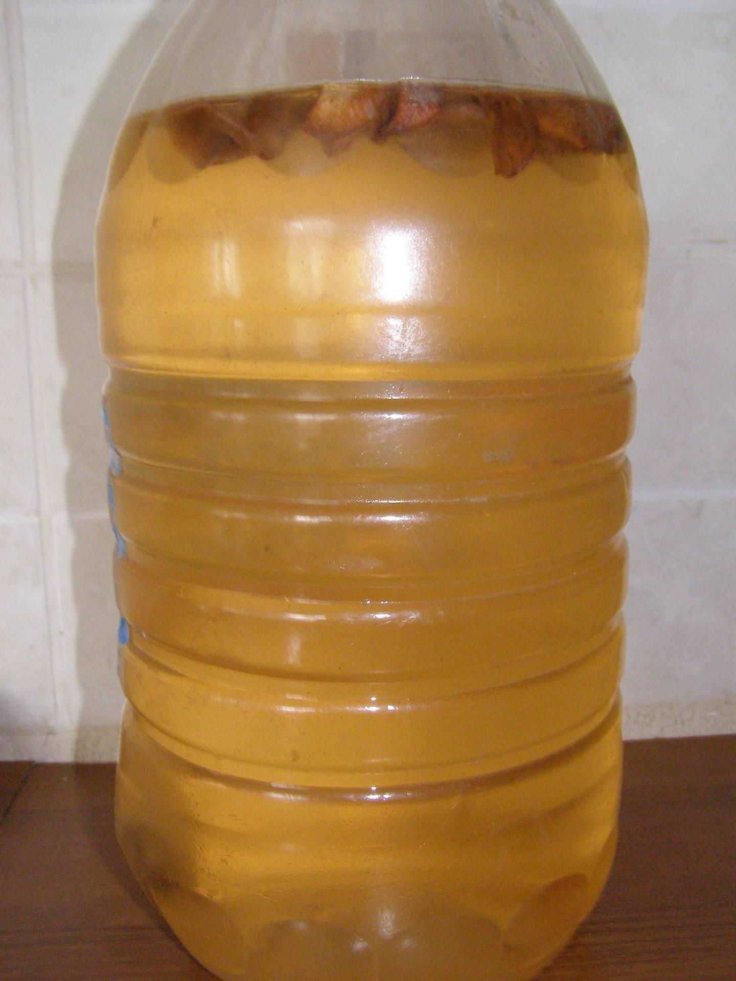 Как сделать квас из берёзового сока и изюма дома
