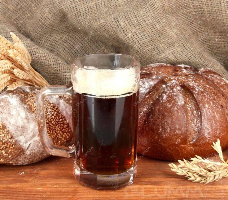 Пиво в домашних условиях: подготовительные мероприятия, рецепты приготовления своими руками