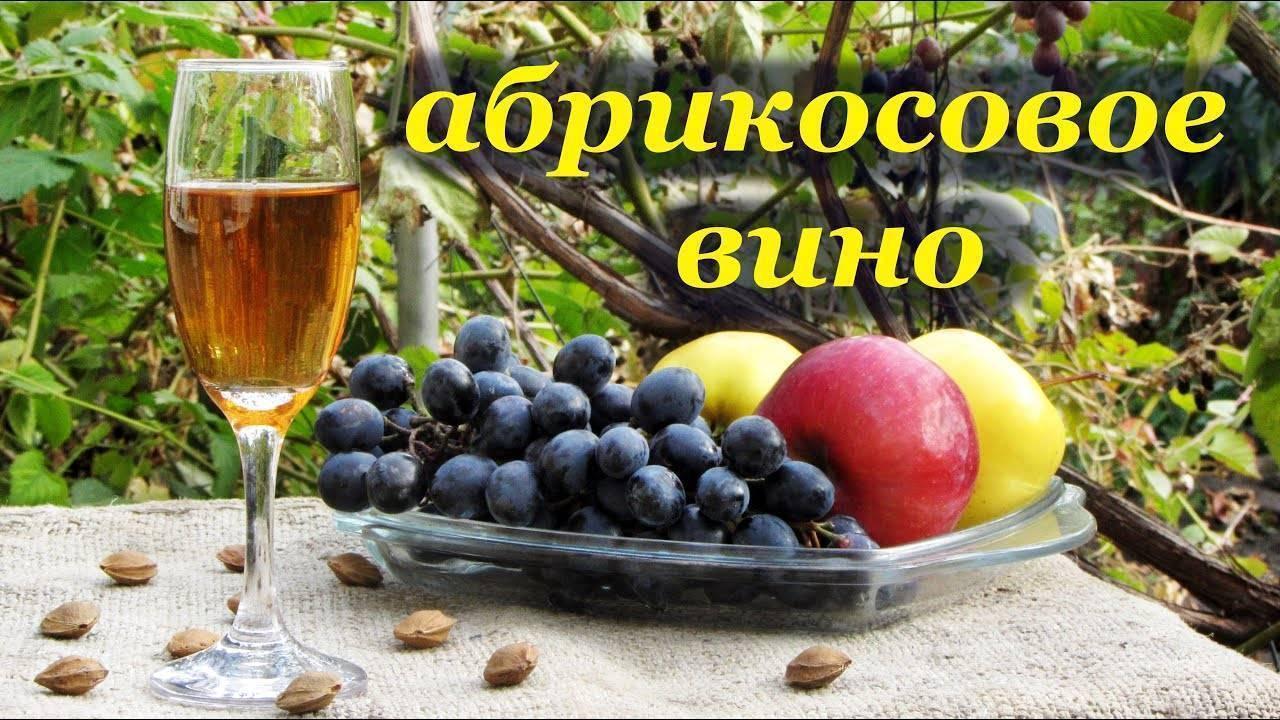 Простые рецепты приготовления вина из абрикосов – с дрожжами и без них
