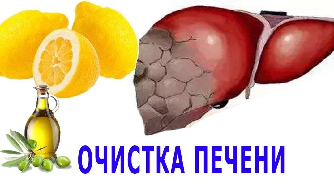 Профилактика и лечение заболеваний печени - твоя печенка