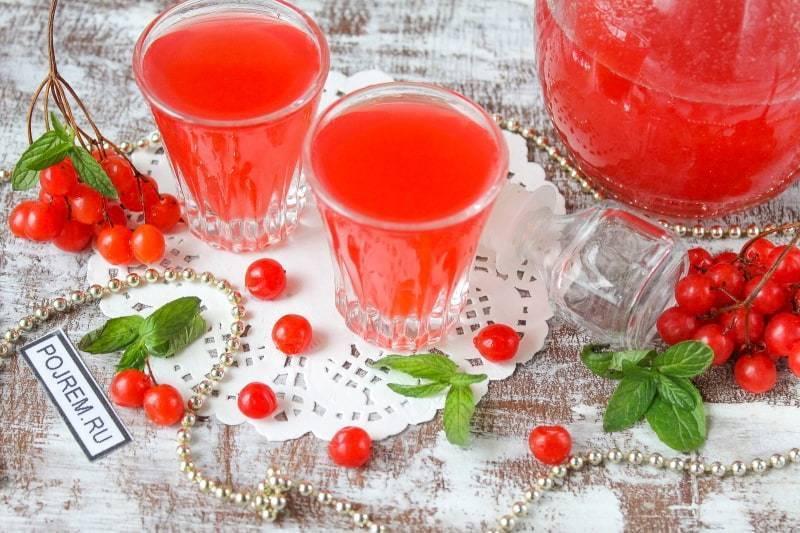 Настойка из калины — рецепты на водке, на спирту, свойства   здоровье и красота