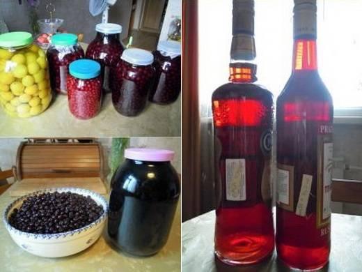 Расскажем, как сделать вино из компота: 6 простых рецептов