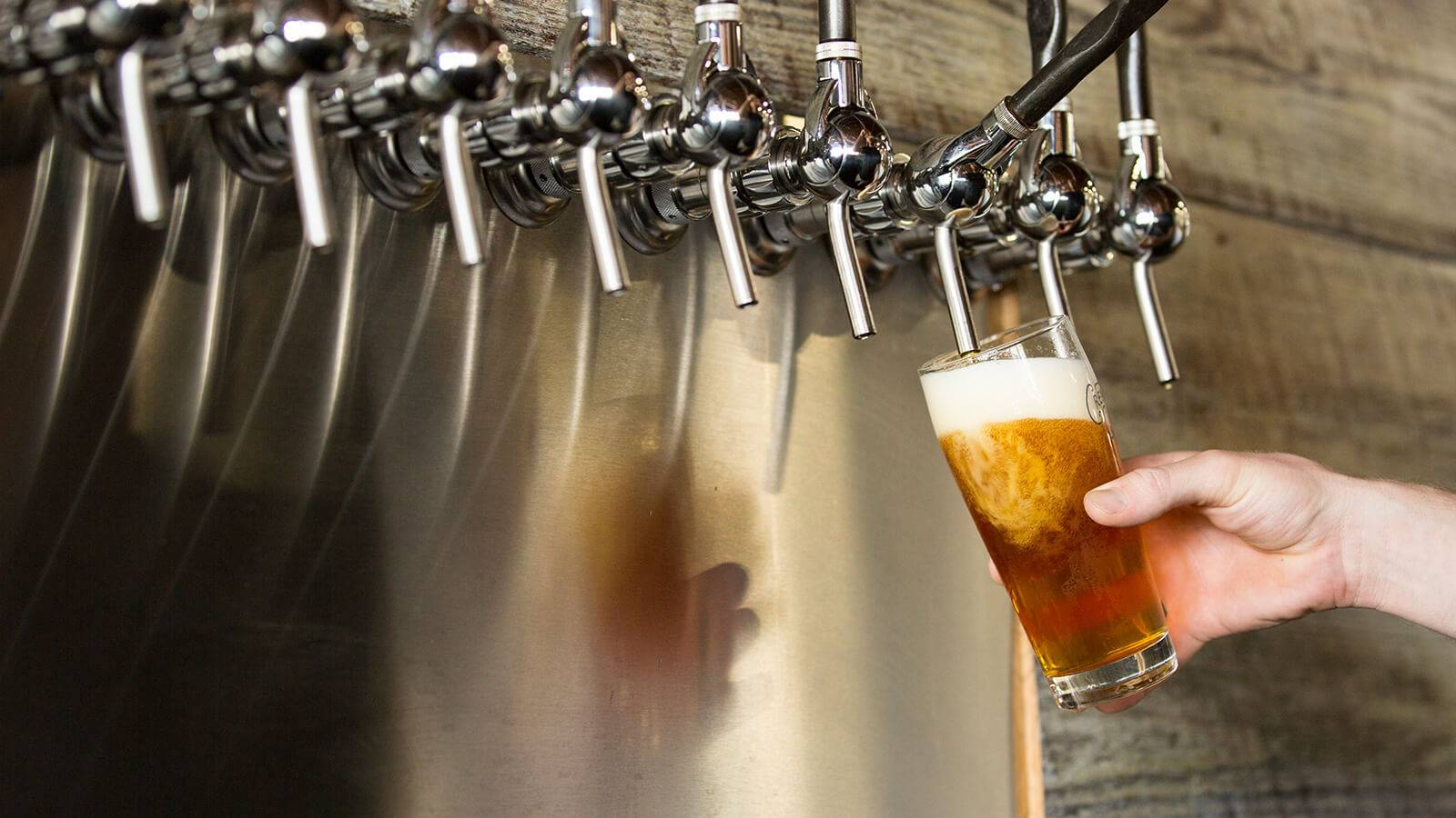 Пиво порошковое