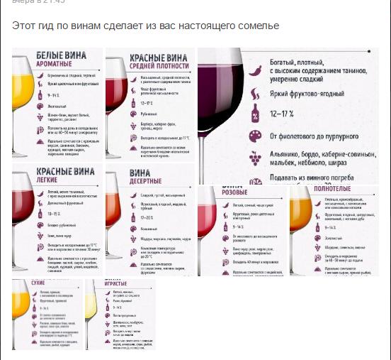Какое вино полезней красное сухое или белое - что лучше пить женщинам