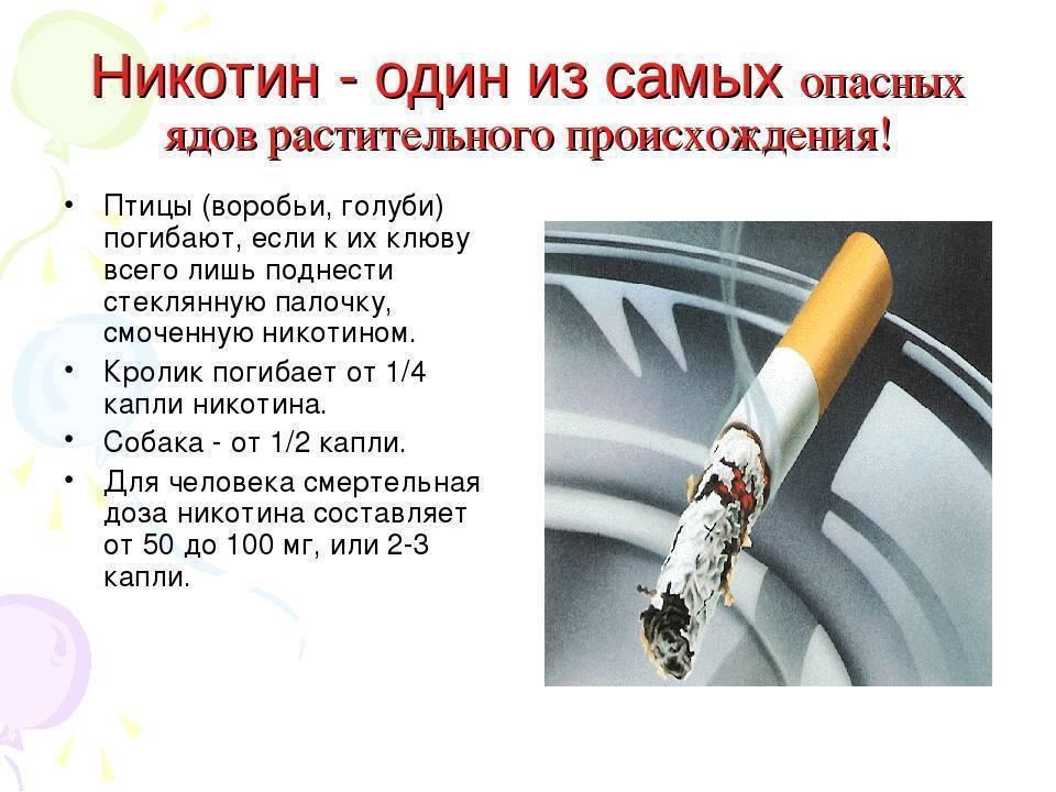Факты о вреде курения