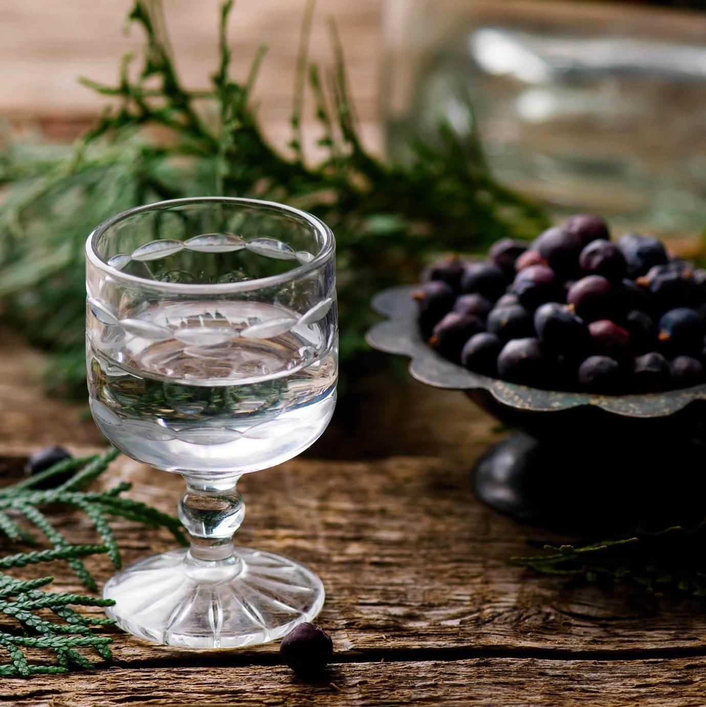 Самогон на можжевельнике: настойка на можжевеловых ягодах, рецепт в домашних условиях
