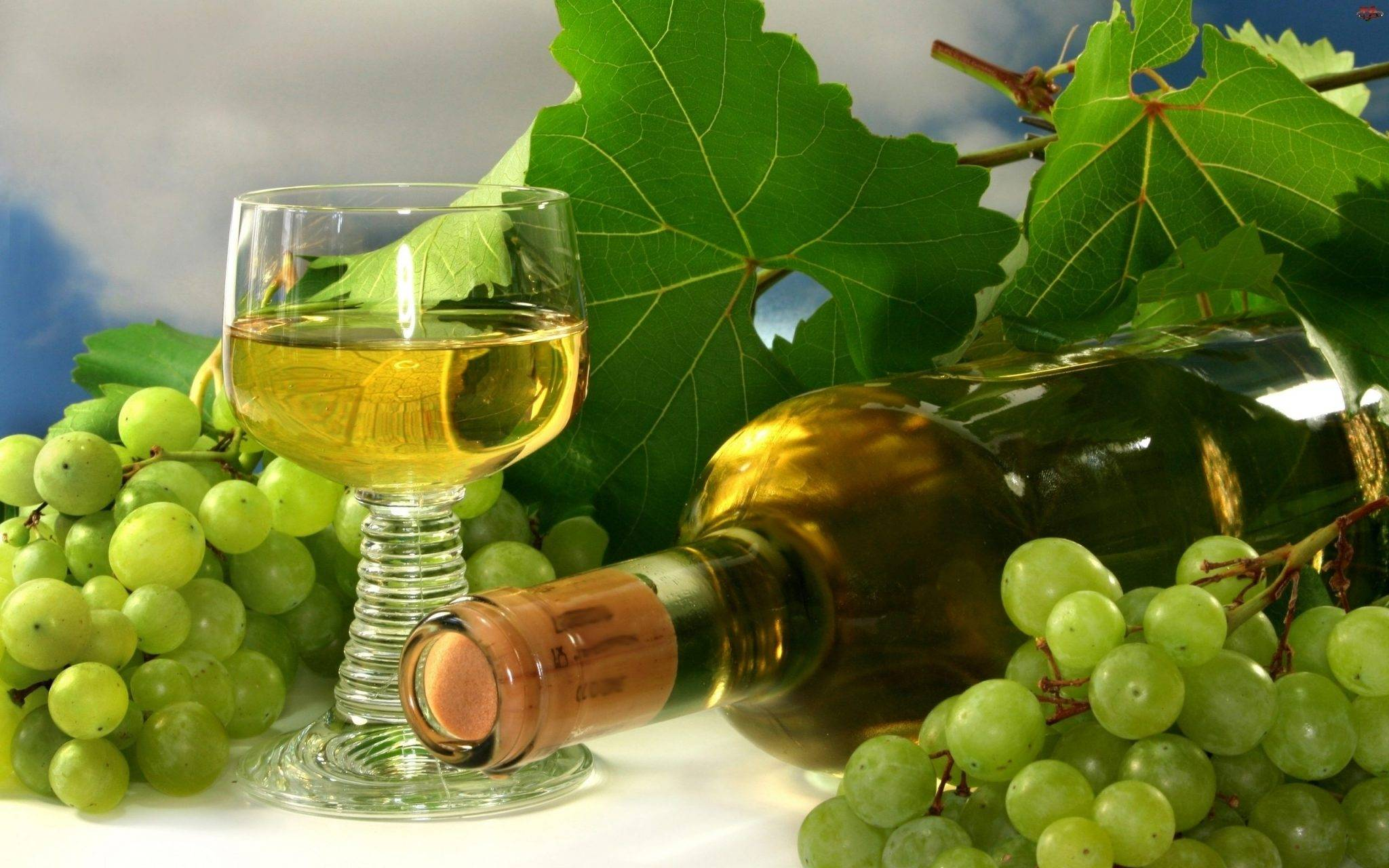 Из какого винограда лучше делать вино? — из какого винограда делают вино — крафтовые напитки