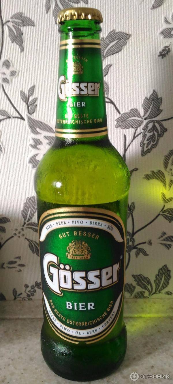 Пиво гессер (gosser) — описание напитка и история создания