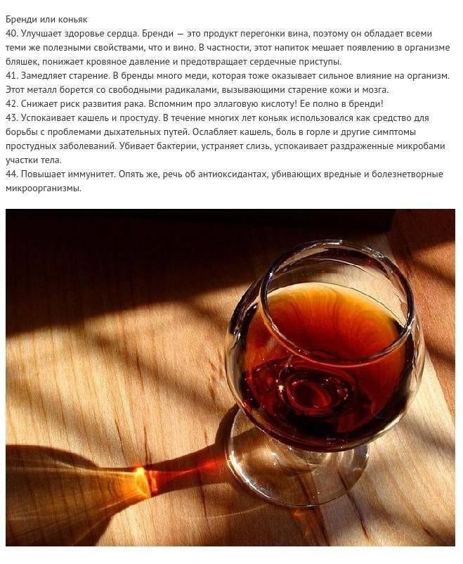 Польза и вред коньяка: влияние крепкого алкоголя на здоровье мужчин и женщин, разрушает ли организм человека употребление этого напитка в малых дозах