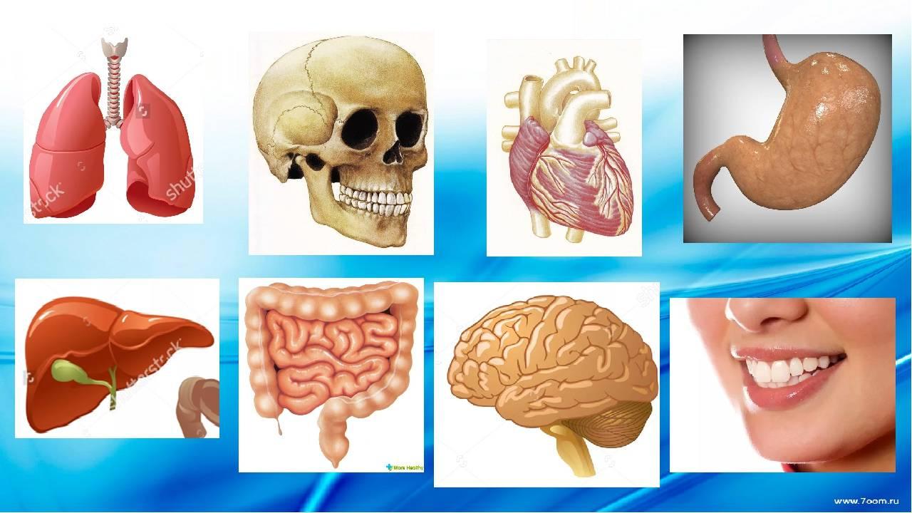 Курить на голодный желудок: каковы последствия для организма