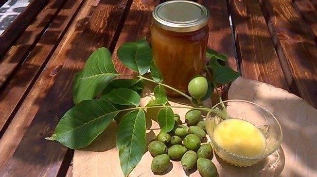 Настойка зеленого грецкого ореха – применение и рецепт приготовления