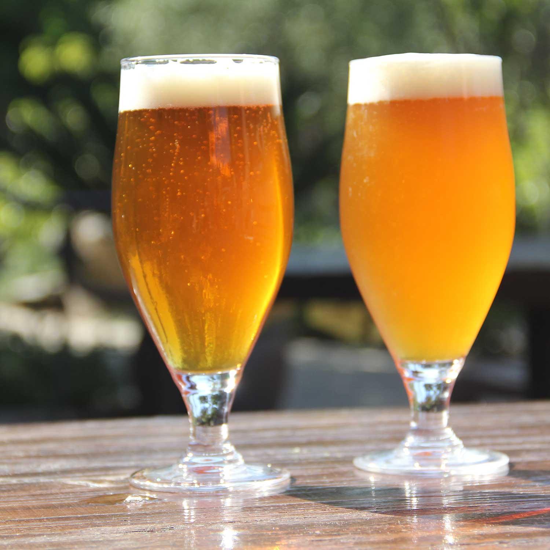 Какое пиво лучше: фильтрованное или нет, живое, бутылочное?