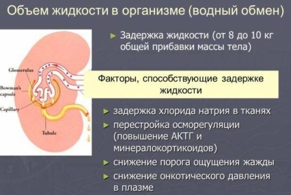 Какие продукты задерживают воду в кишечнике