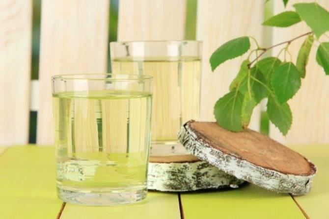 Самогон из березового сока в домашних условиях: рецепт и фото