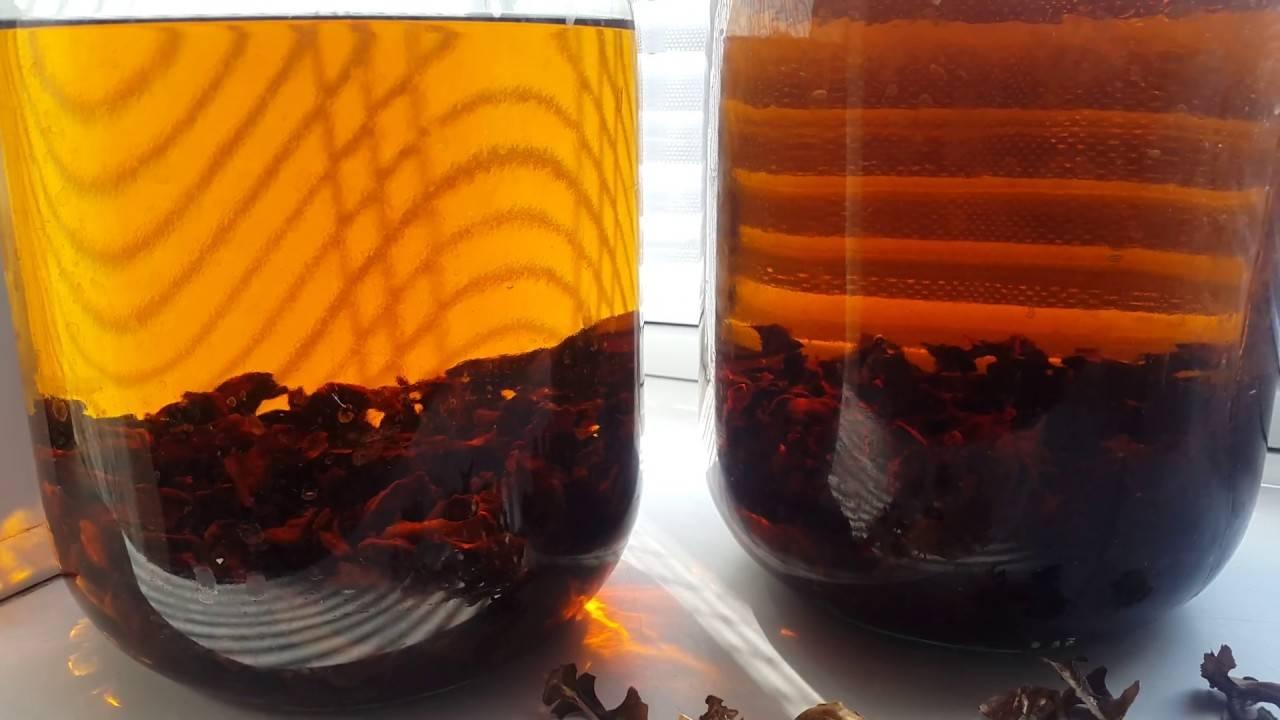Настойка из перегородок грецких орехов: польза и вред, как сделать, особенности применения