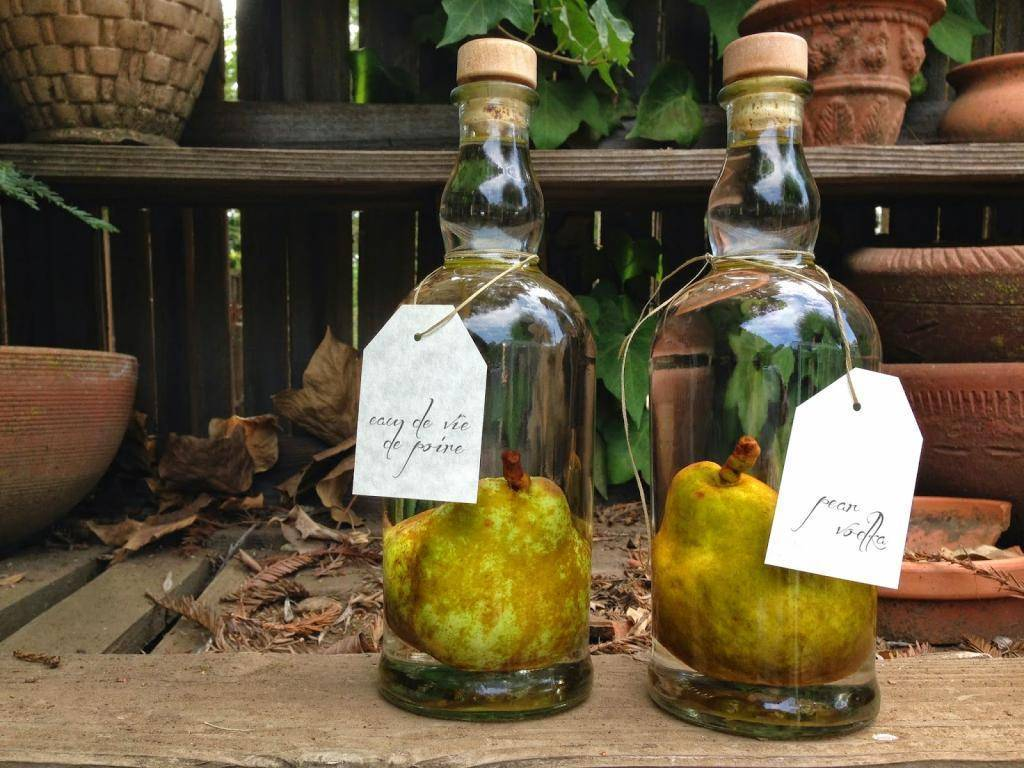 Домашние вкусные алкогольные напитки — описание и рецепты