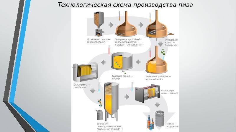 Технология производства пива