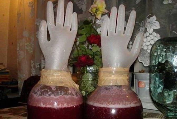 Вино из компота: как сделать в домашних условиях