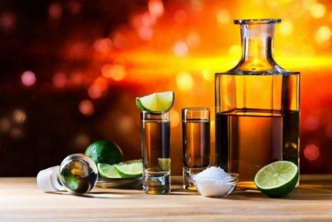 Текила из самогона: 2 рецепта мексиканского напитка в домашних условиях ⛳️ алко профи