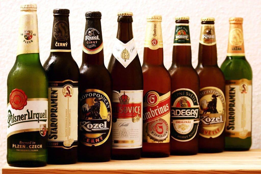 Чешское пиво: 100 фото, лучших марок, производителей и особенности пива из Чехии