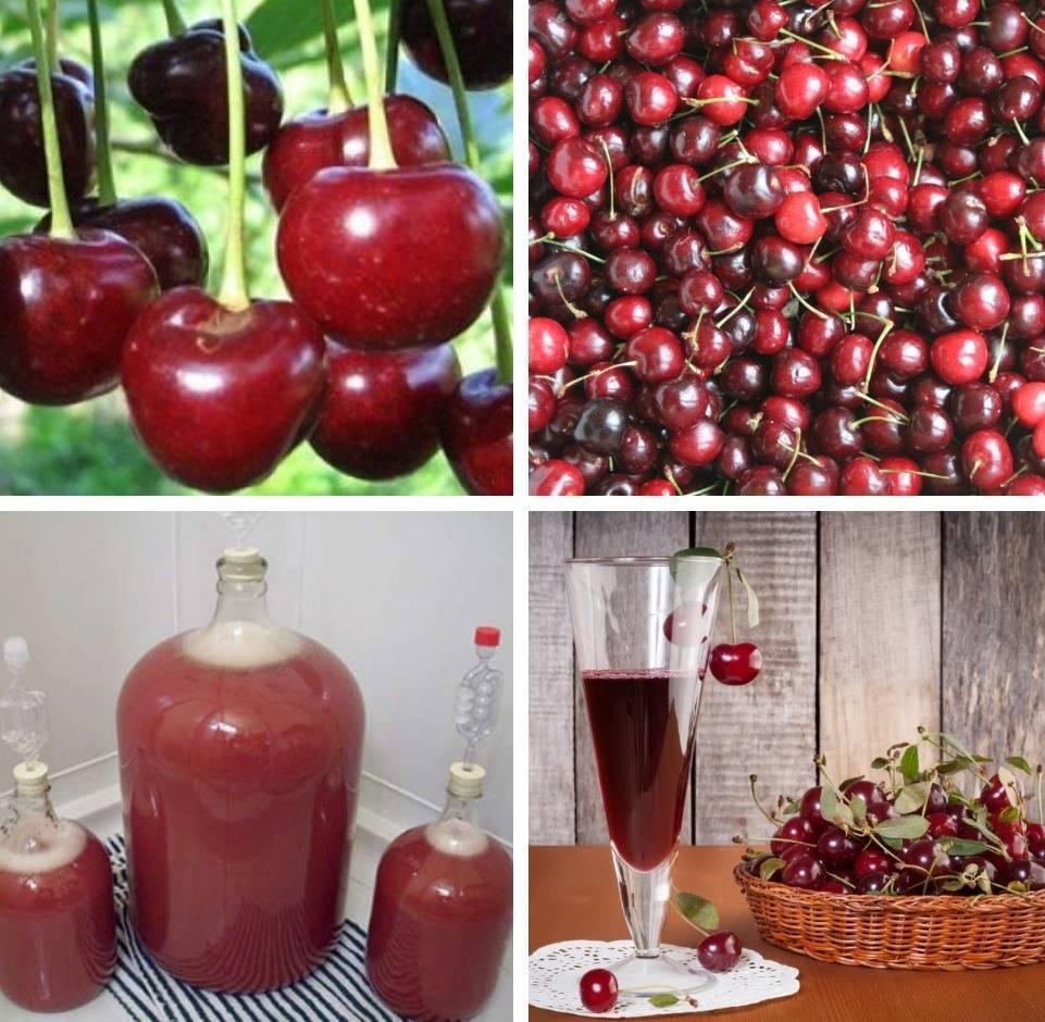 Вино из варенья в домашних условиях простой рецепт