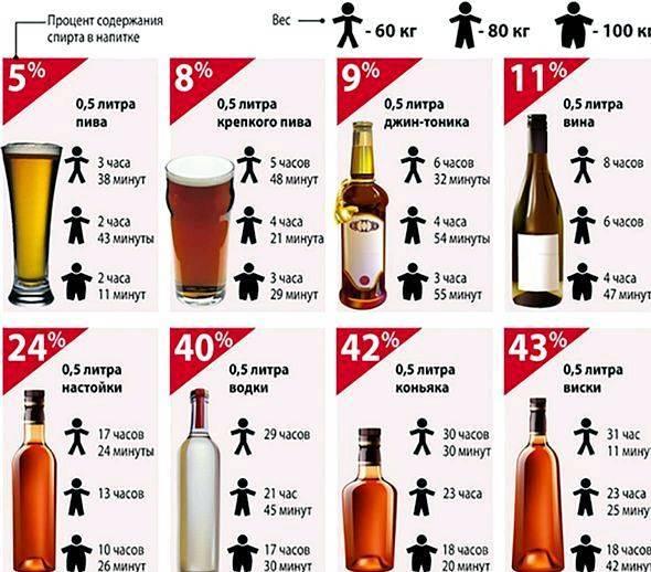 Сколько держится перегар от пива и как его быстро убрать: через сколько выйдет амбре от 1, 2, 3 литров напитка, а также будет ли запах от безалкогольного
