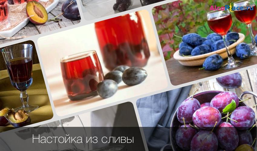 Сливовая настойка – домашние рецепты