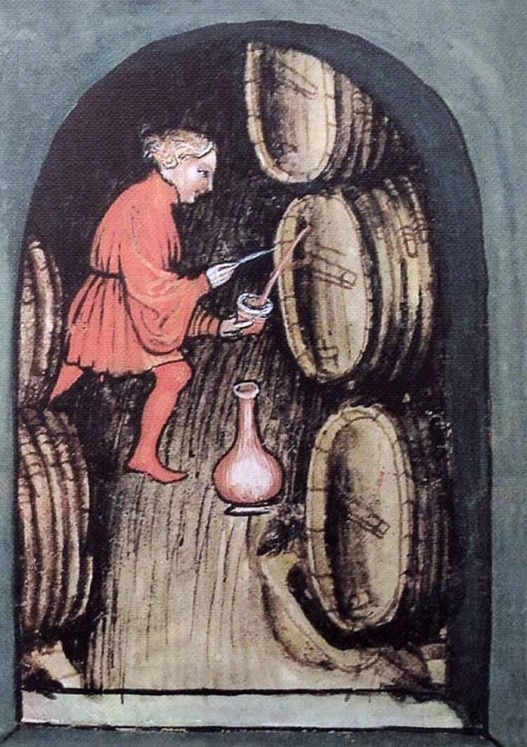История вина и виноделия – появление и важные этапы развития