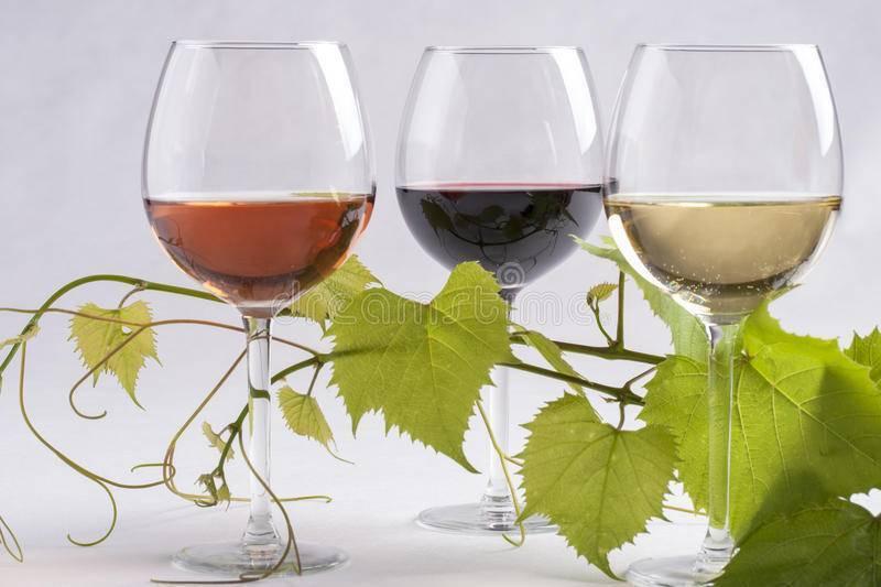 Красное вино повышает или понижает давление — действие на организм