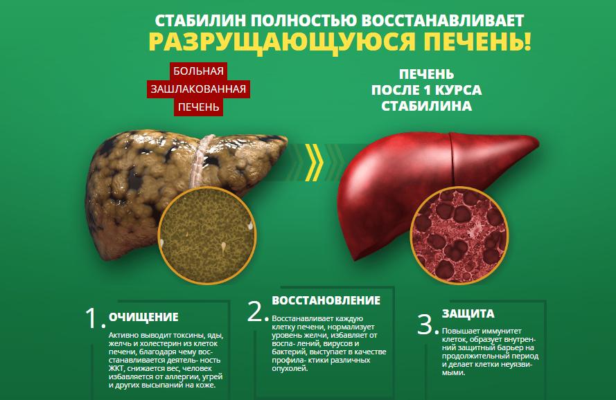 Очистка печени после алкоголя — применение препаратов, трав и овощей