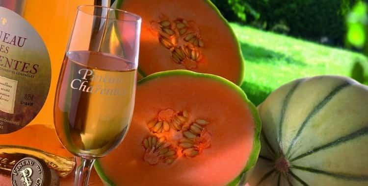 Как правильно пить вино: этикет подачи и употребления