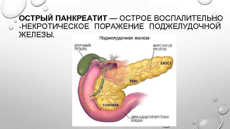 Можно ли курить при панкреатите. влияние курения на поджелудочную железу | vrednuga.ru