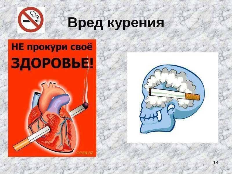 Каков конкретно вред курения и алкоголя на организм человека