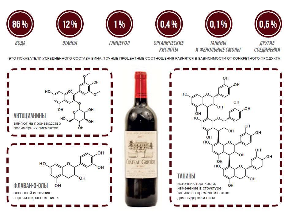 Полезные свойства вина: противопоказания, польза и вред