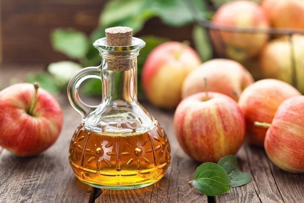 Как сделать яблочный уксус в домашних условиях – рецепт, теория