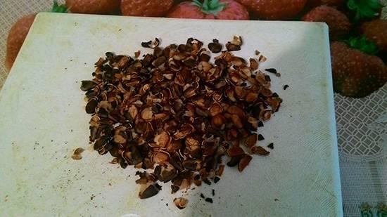 Кедровая настойка: польза и вред, рецепты, применение, отзывы