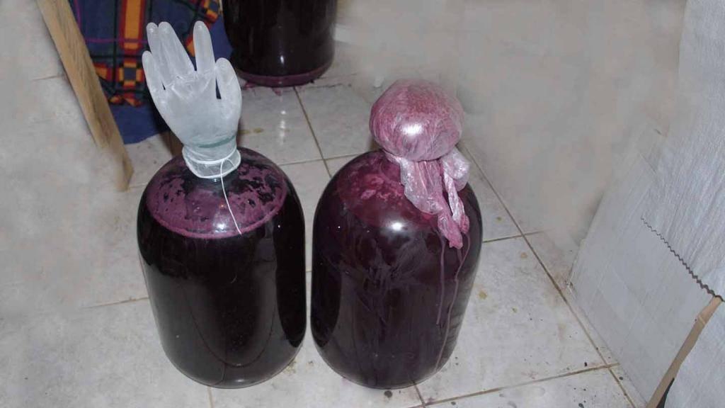 Вино из винограда сорта лидия: как сделать в домашних условиях