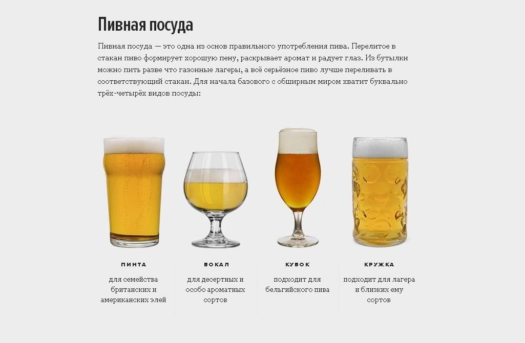 Пиво и пивной напиток: различие составов и вкусов