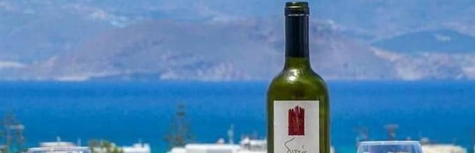 Красное, белое, розовое греческое вино – какое лучше попробовать? + видео   наливали