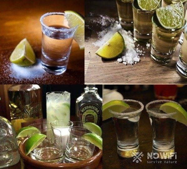 7 способов пить текилу правильно без соли и лимона