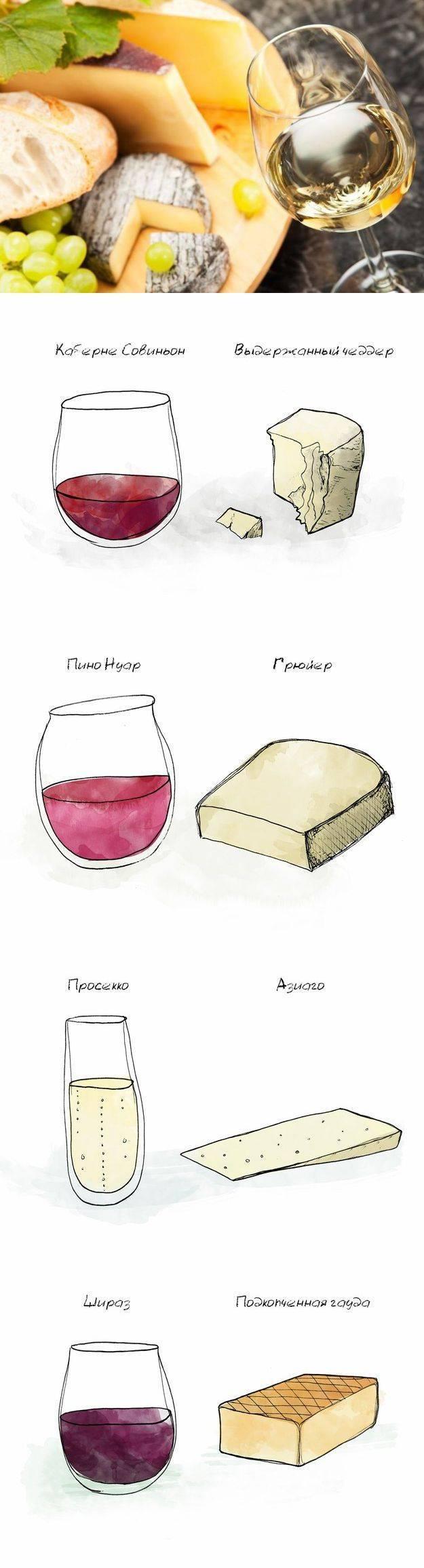 Все гениальное просто: как сочетать сыр и вино?