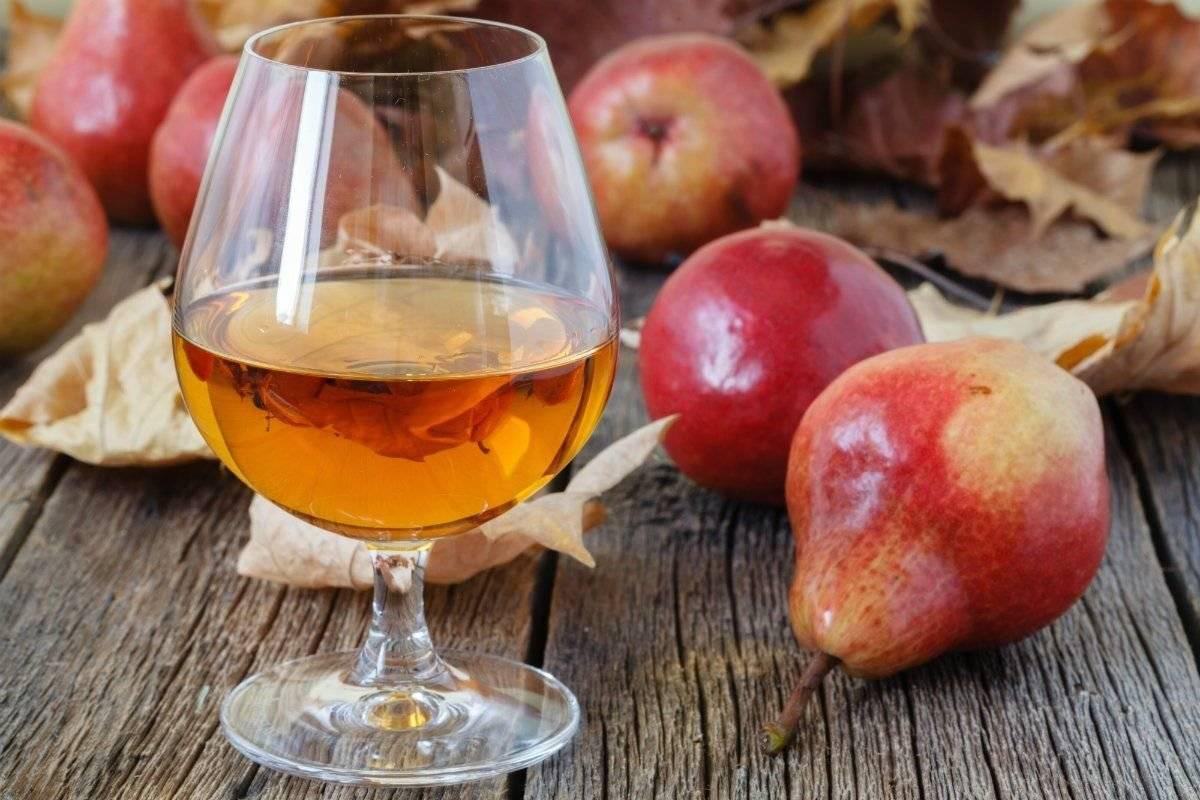 Вкуснейший яблочный самогон в домашних условиях. как поставить брагу на яблоках?