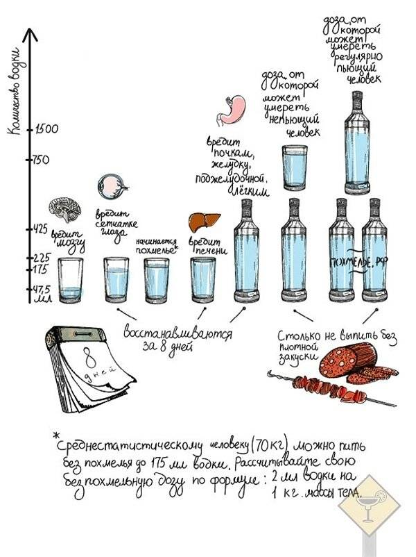 Как правильно пить водку и чем можно её закусывать?