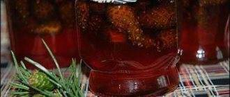 Настойка из боярышника: рецепт приготовления на водке в домашних условиях, польза и вред