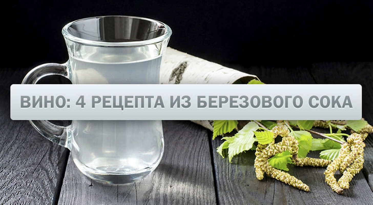 Брага из березового сока для самогона: лучшие рецепты в домашних условиях
